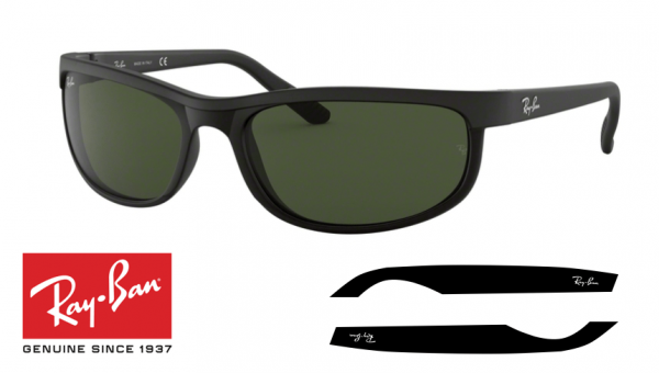 Hastes Ray-Ban 4263 originais